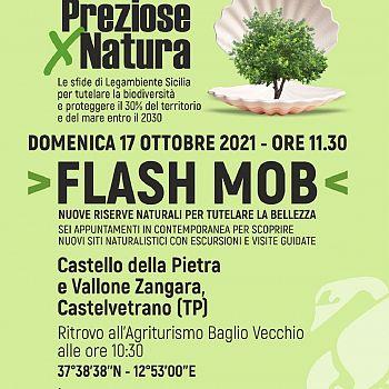 /images/3/0/30-locandina-flash-mob-castello-della-pietra-e-vallone-zangara-del-17-ottobre-2021.jpg