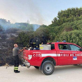 /images/6/2/62-incendio-riserva.jpeg