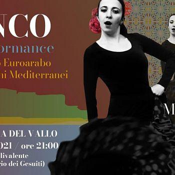 /images/6/4/64-flamenco.jpg
