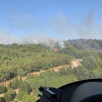 /images/6/5/65-incendi-boschivi-trapanese--7-.jpg